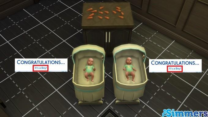 gênero do bebê 4